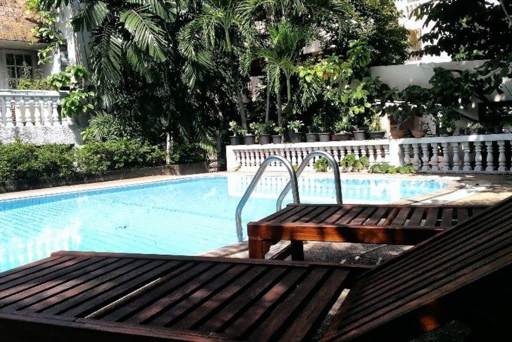 Pool and Sunbathe Area