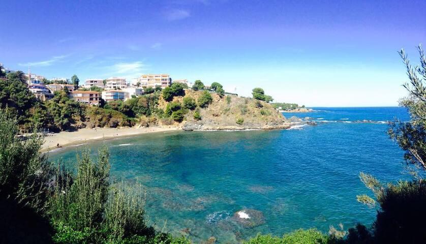 studio bord de mer  avec terrasse a LLança