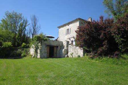 Traditional  Farmhouse and gite + pool (sleeps 14) - Belvèze