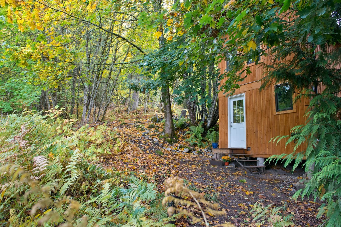 Nelson tiny Home for rent