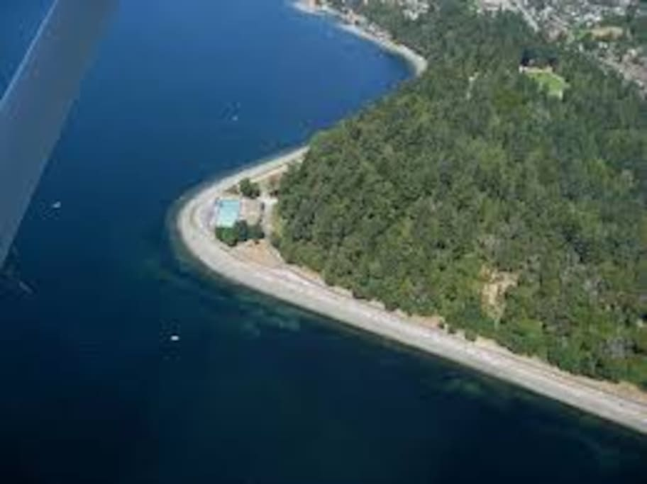 Aerial view of Lincoln Park and Colman Pool