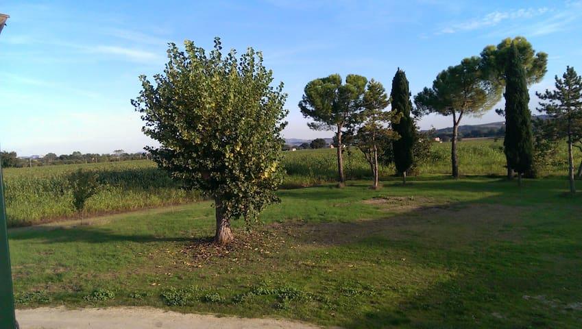 Monolocale elegante in agriturismo - Osimo - Apartament
