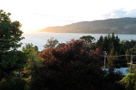 Otago Peninsula Harbour View - Dunedin