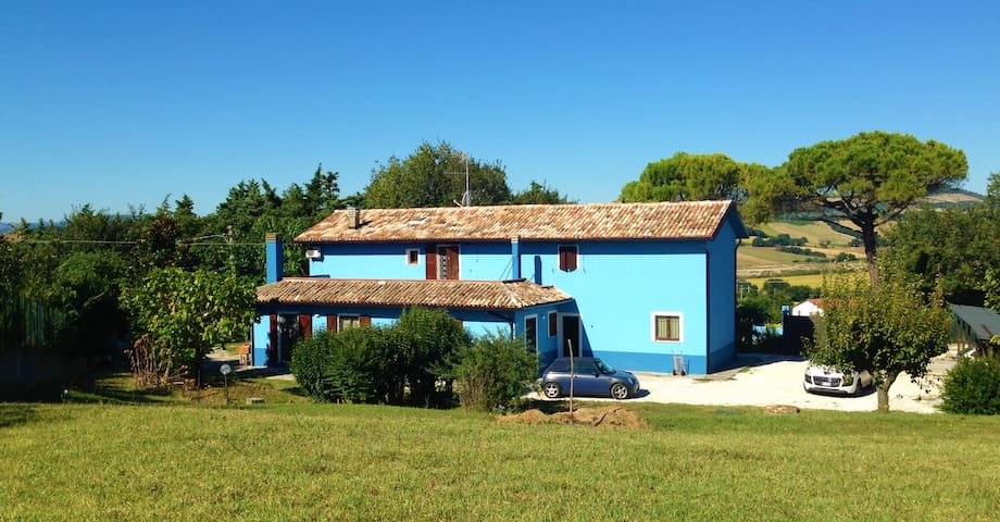Il Gelso - Camera Lavanda - Pesaro - Casa
