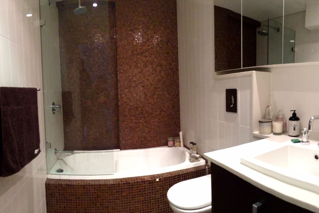 Well appointed modern bathrooms with monsoon shower