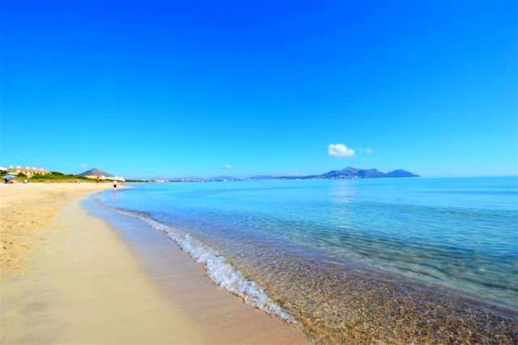 NICEST BEACH