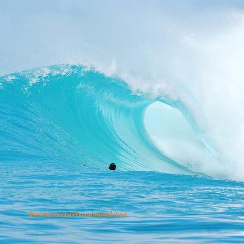 Muli Inn Surfview,maldives , surfers choice