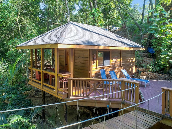 Turtle Studio w/Kitchen, Steps to Beach/Dock/Pools