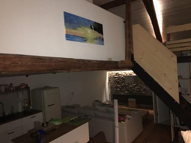 Chalet/Loft - ambiance chaleureuse ancien/moderne - La Brillaz - Loft空間