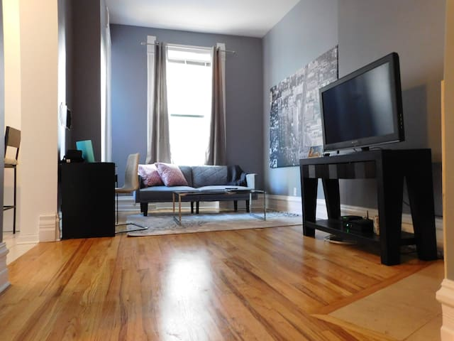 Warm Cozy 1 BR Apartment Goldcoast - Chicago - Appartement