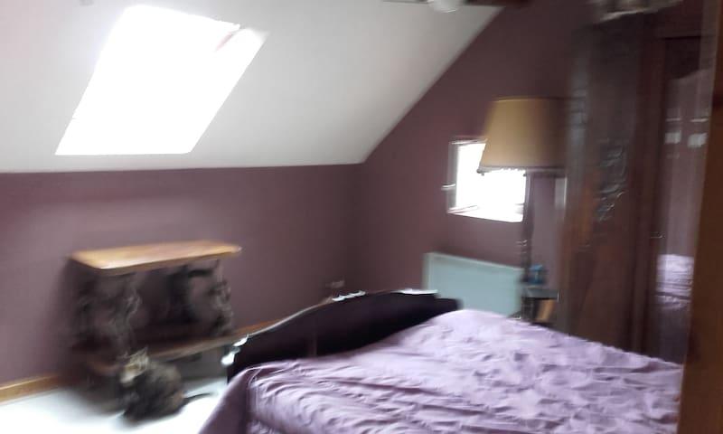 chambre chez l habitant