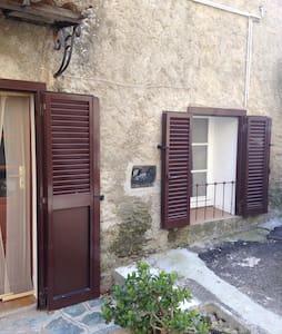 Beau studio 38m² proche St Florent - Murato - Apartment