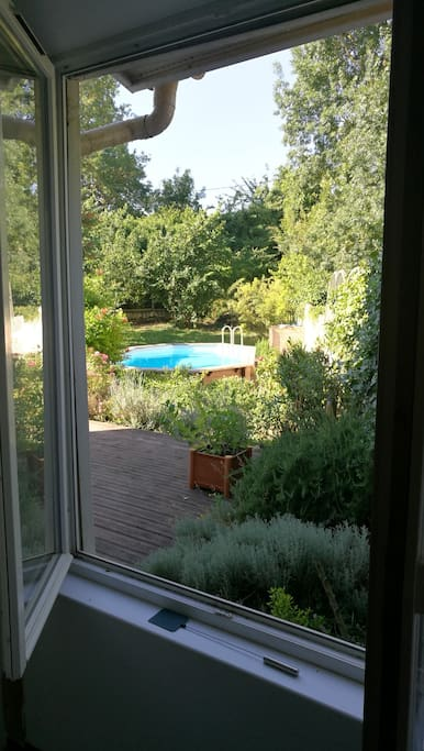 Windows to garden area