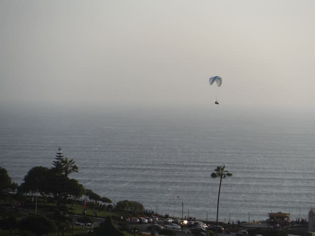 Watch paragliders soar over the ocean from your windows!