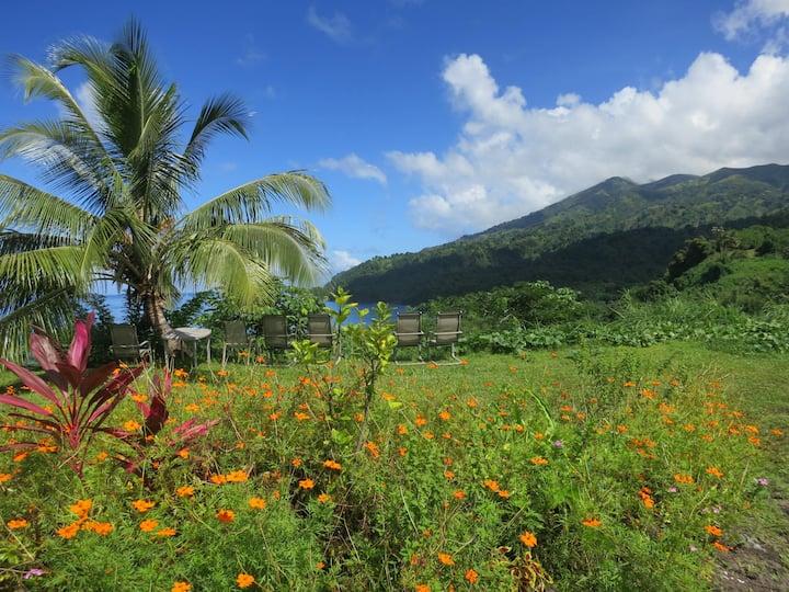 Caribbean Affordable accomodation