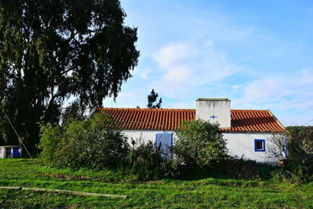 Várzea House: great for holidays