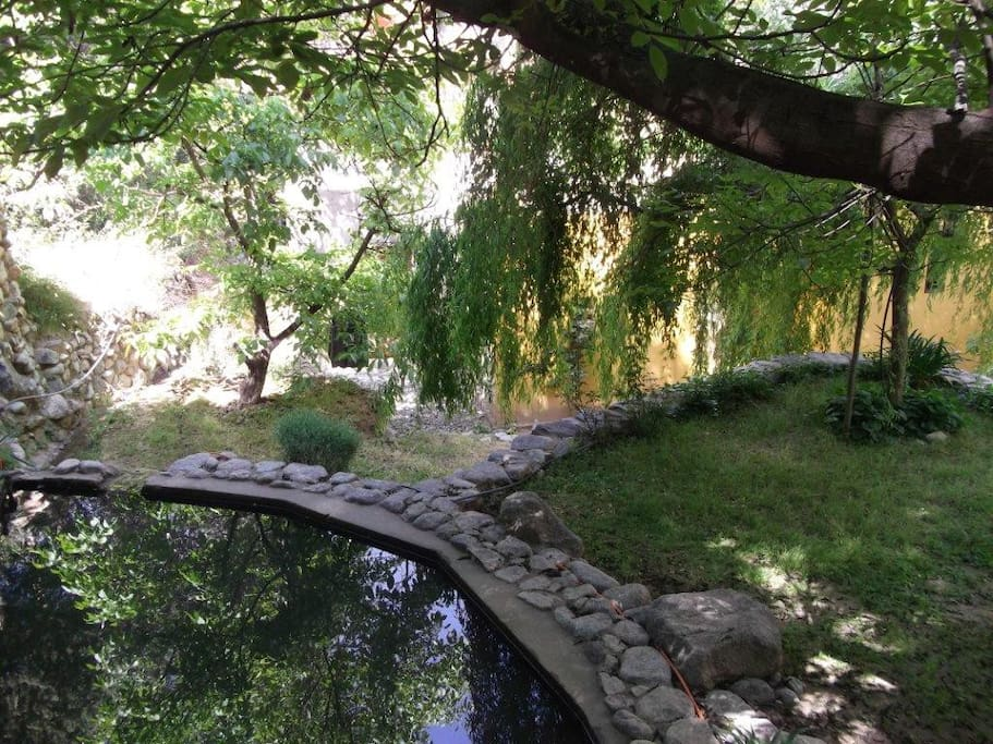 Jardin avec reserve d'eau