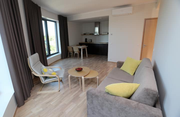 RiiaQuarter Apartment