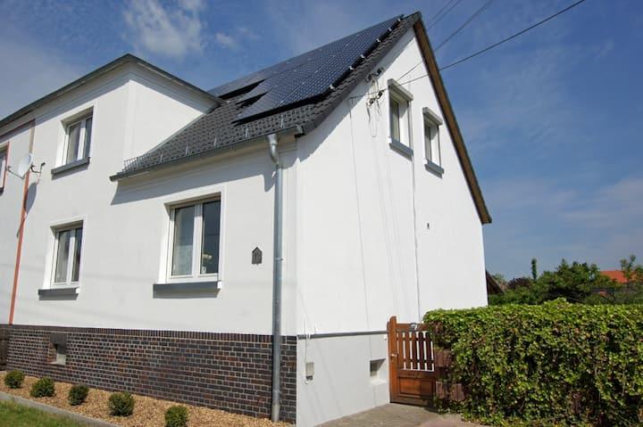 Modernes Haus mit kleinem Garten