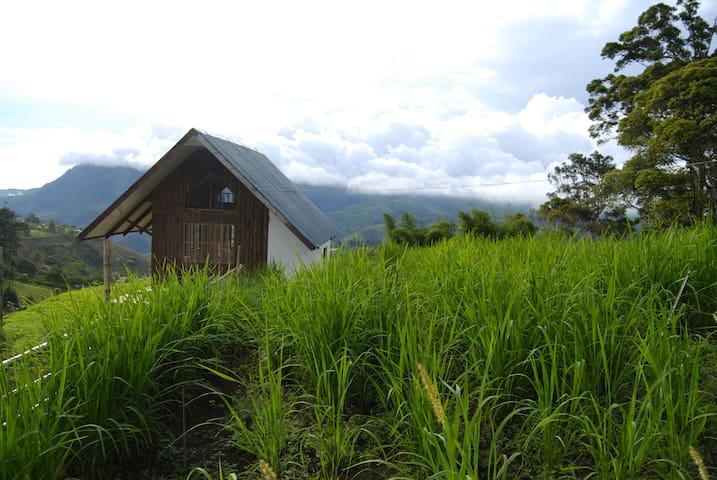 Quaint Moss & Grove hilltop cabin in Kapatagan