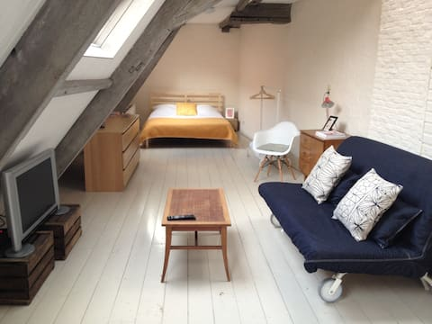 Spacious studio apartment with one double bed and one double sofa bed