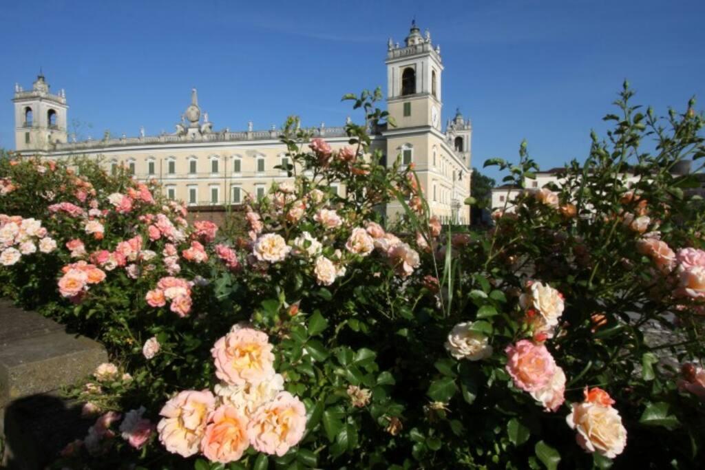 Vista della Reggia di Colorno dall'argine del torrente Parma