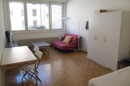Cozy studio in the heart of Geneva! - 日內瓦