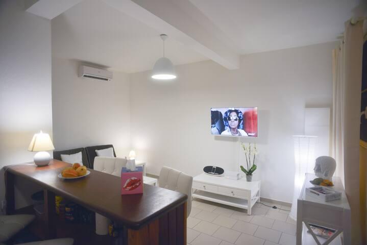 SUPERBES T2 EN DUPLEX AVEC TERRASSES ET PARKING - Cayenne - Condominium
