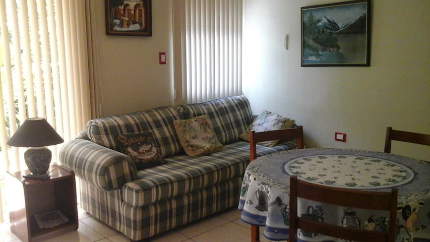 apartment for rent near the Airport - Alajuela - Appartement