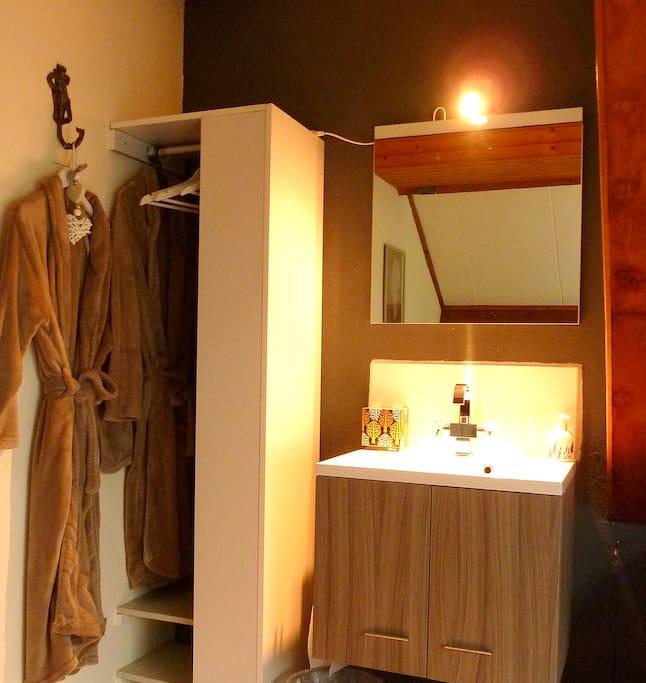 Washing bin with closet and bathrobes.