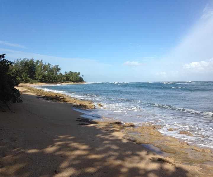 Oceanfront Penthouse in Secure Gated Community