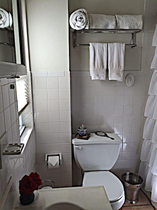 Bright, squeaky clean bathroom.