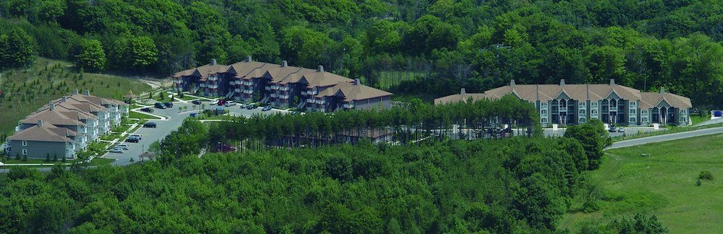 TIMESHARE 1 B/R at Carriage Resort, Ontario - ORO-MEDONTE - Apartamento