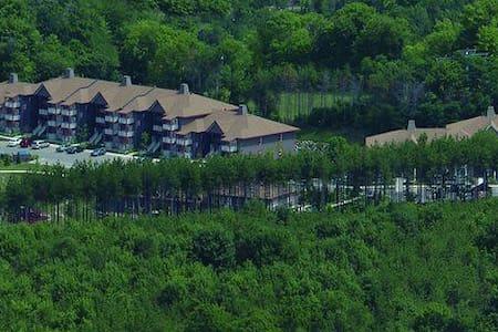 TIMESHARE 1 B/R at Carriage Resort, Ontario - ORO-MEDONTE - Leilighet