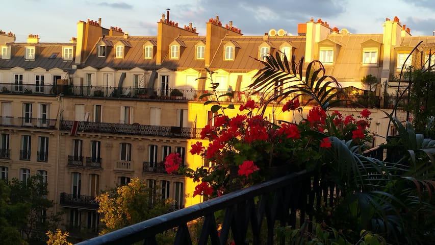 A balcony in Paris - Châtelet-les halles quartier