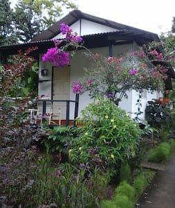 Twin 4 - Chalet in the Gardens - Bentong