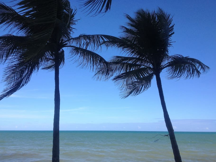 Praia de Boa Viagem. Desejo  que tenham boas recordações.