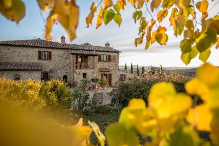 Villa Belvedere :A true Gem Under the Tuscan Sun