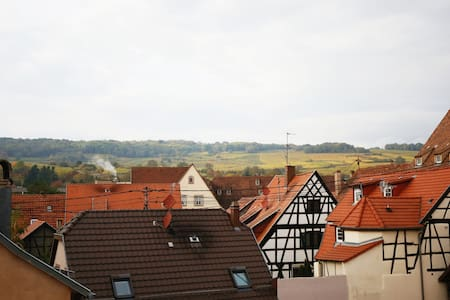 Loft comfortable in the Alsatian roofs - Molsheim - Appartement