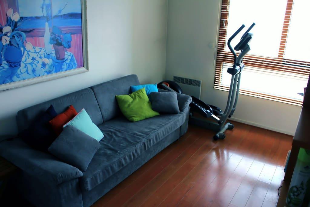 le canapé lit est très confortable et la chambre très calme donne sur une terrasse
