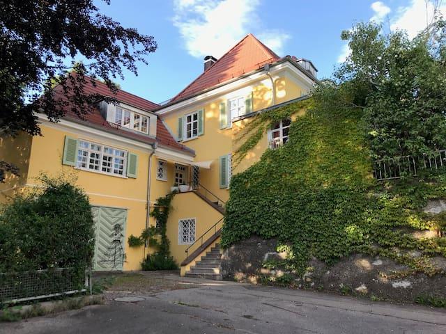 Das Alte Doktorhaus - phantastische Architektur