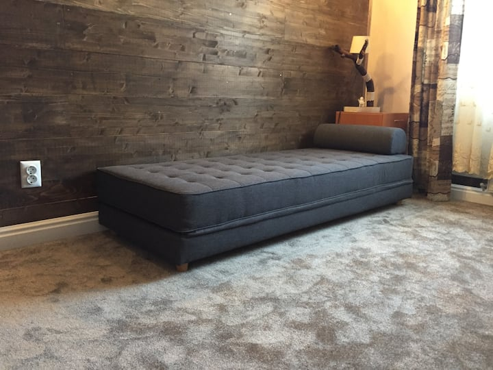 American stylish with wooden wall