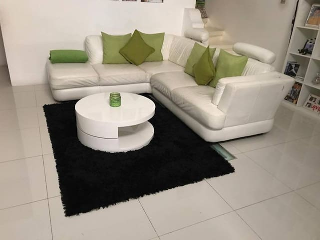 brincats home