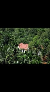 Homely Farmstay Villas In Wayanad- KRLWYN0001