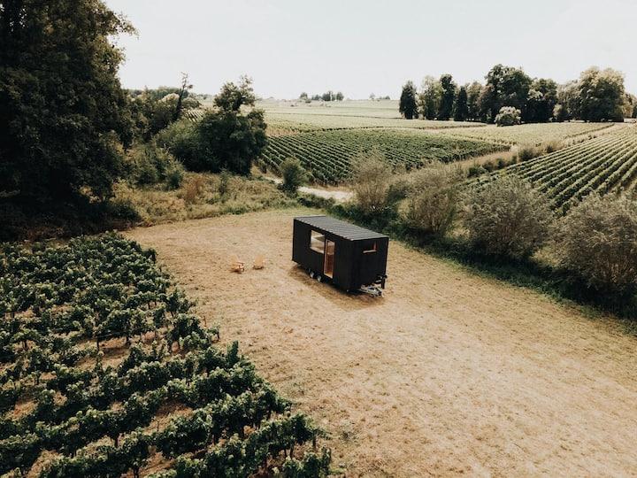 Tiny House au coeur des vignes de Saint-Émilion