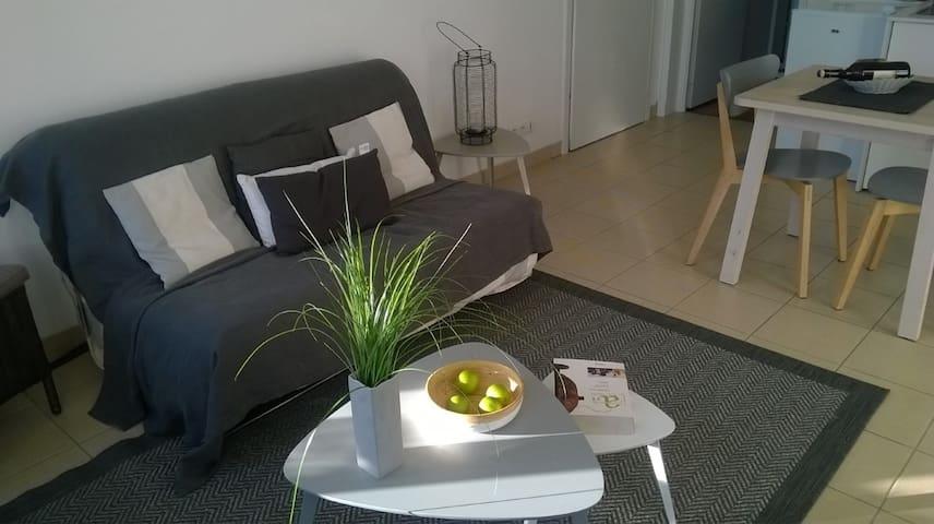 Appartement de charme lumineux et sans vis à vis - Saint-Omer - Apartmen