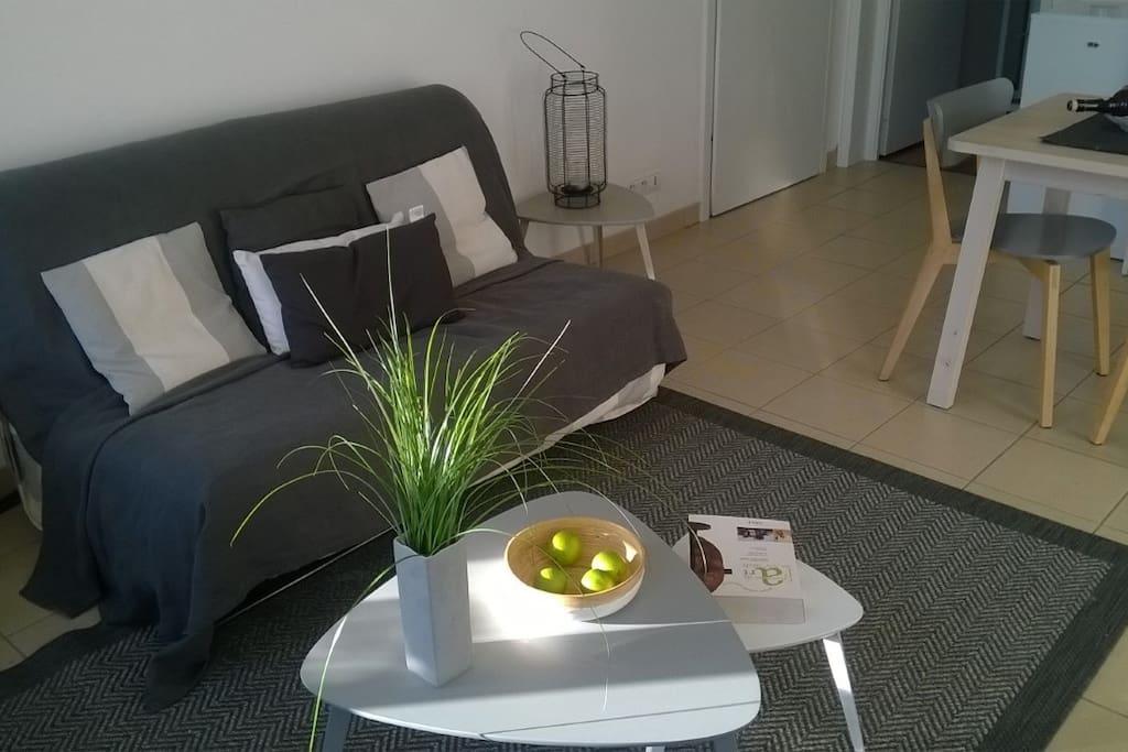 appartement de charme lumineux et sans vis vis appartements louer saint omer nord pas. Black Bedroom Furniture Sets. Home Design Ideas