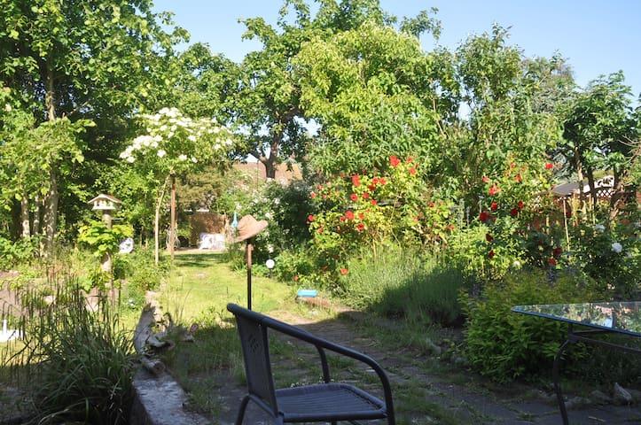 Ruhiges Gartenhaus - Fehmarn - Haus