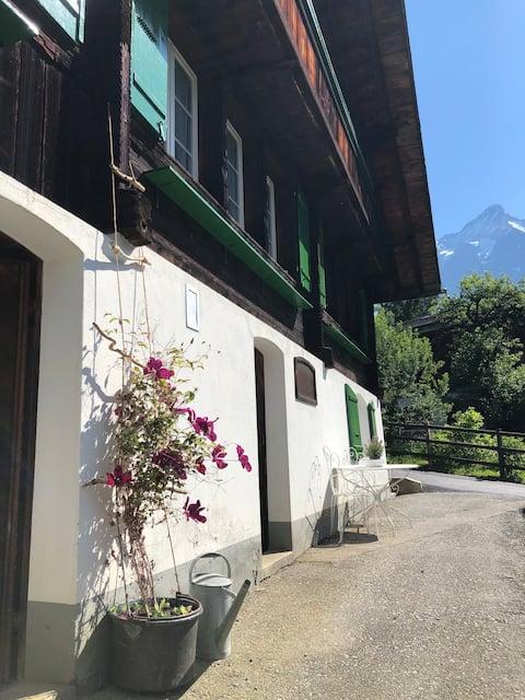 Moosgadnhaus - Studio mit schönstem Bergblick