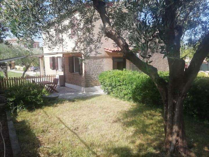 monolocale giardino in Villa  300 mt mare ID12014